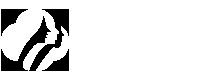 安琢美业-三八妇乐集团旗下品牌